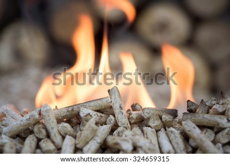 Biomass- pellets in flame, closeup, selective focus - stock photo