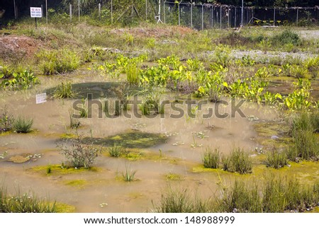 Bioremediation pond for soil contaminated with crude oil at an oilfield in the Ecuadorian Amazon - stock photo