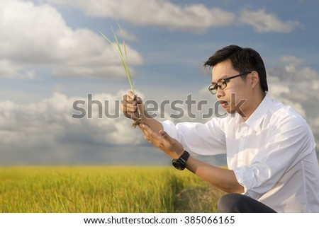 Biotechnology  engineer  examining a plant leaf for disease blue sky background - stock photo