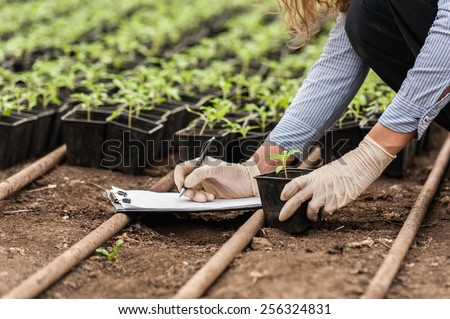 Biotechnology woman engineer with a clipboard and pen examining a plant  for disease! - stock photo