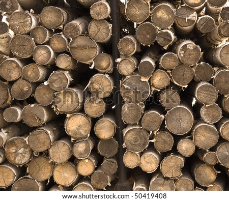 Birch burnt together in a bundle of firewood. Close-up. Straight saw cut. - stock photo
