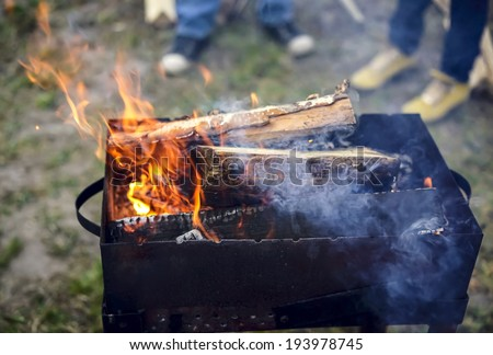 Birch firewood burning in the brazier for cooking - stock photo