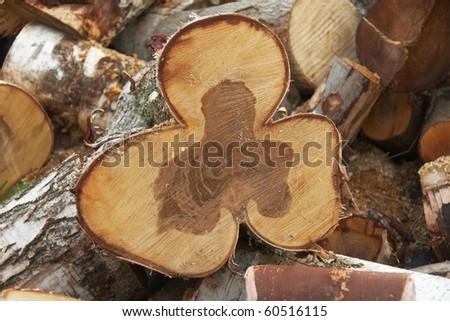 Birch firewood cut like trefoil - stock photo