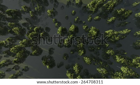 Birch groove. View from above. Three dimensional illustration. - stock photo