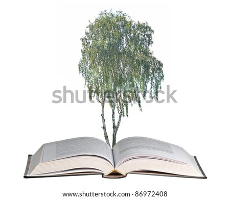 Birch tree growing from book