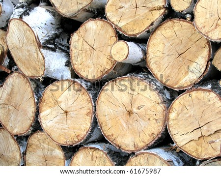 Birch wood, built in woodpile. - stock photo