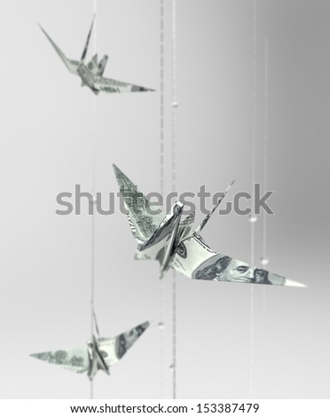 bird banknote represent financial freedom - stock photo