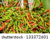 Bird Chilli (Capsicum frutescens Linn.). - stock photo