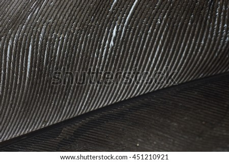 bird feather macro background