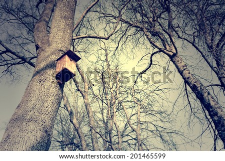 Bird feeder on tree  - stock photo