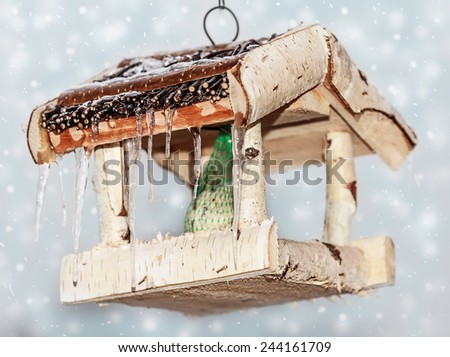 bird feeder with icicles on winter background - stock photo