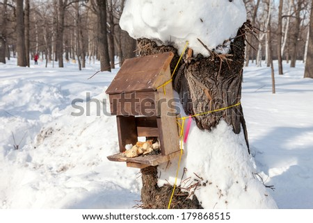 Bird feeders in the winter park - stock photo