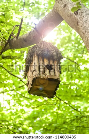 Bird house hanging from the tree with the entrance hole in the shape of a heart. Beech Forest - stock photo