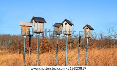 Bird houses - stock photo