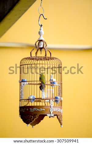 Bird in an ornate cage, SIngapore. - stock photo