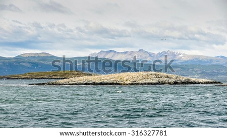 Bird island in Beagle Channel, Ushuaia, Argentina - stock photo