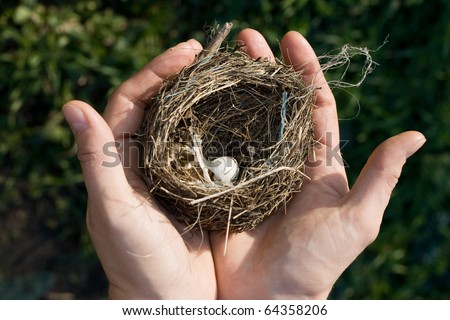 Bird nest with a tiny white egg in a woman s outstretched hands in