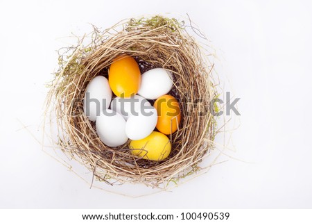 Bird nest with chocolate eggs