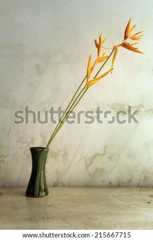 Bird of paradise flowers in vase over grunge background - stock photo