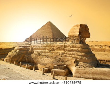 Bird over sphinx and pyramid in egyptian desert - stock photo