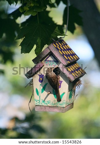 bird perched on birdhouse - stock photo
