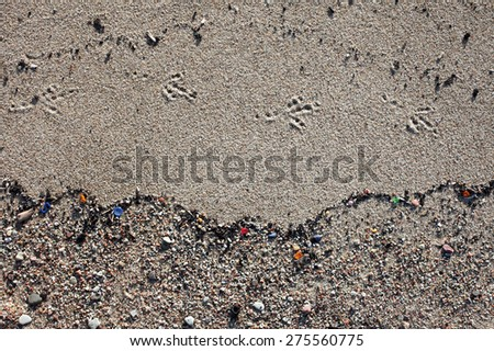 Bird's footsteps at sand, underlined by wave pattern consisting of button, glass pieces and shells.   - stock photo