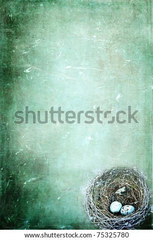 Bird's nest with eggs on a grunge background with copy space. - stock photo