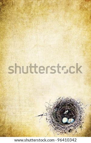 Bird's nest with eggs on a grunge yellow background with copy space. - stock photo
