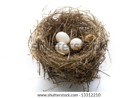bird's nest with three eggs isolated on white