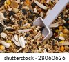 bird seed with spoon - stock photo