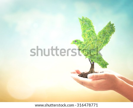 Bird shape of tree in human hand over blurred world map of clouds background. Natural energy, Ecology, World Environment Day, Peaceful concept. - stock photo