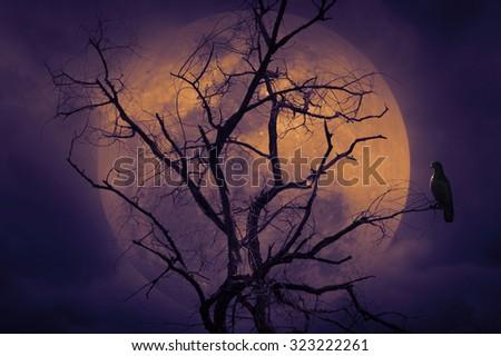 Bird sitting on dead tree against full moon, Halloween background - stock photo