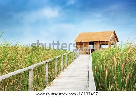 Bird watching hut at lake Tisza, Hungary. - stock photo