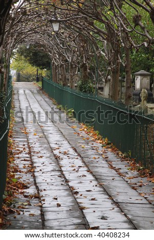 Birdcage Walk where pleached Lime trees form an archway through St Andrew's churchyard in Clifton, Bristol UK