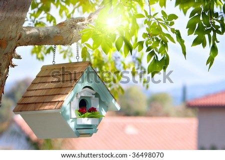 birdhouse hanging from branch