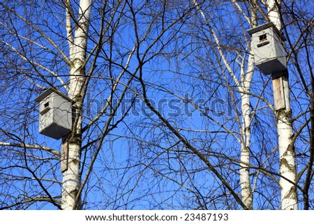 Birdhouse in snowy tree