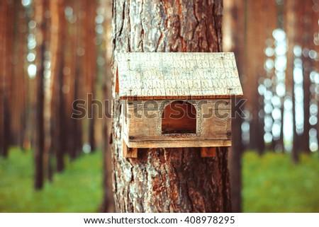 Birdhouse in the woods - stock photo