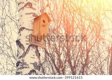 Birdhouse on a birch tree in winter - stock photo