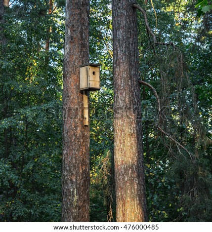 Birdhouse on a pine tree in the forest
