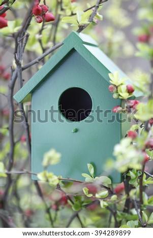Birdhouse with spring flowers - stock photo