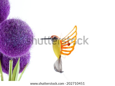 Birds and flowers isolated white background - stock photo