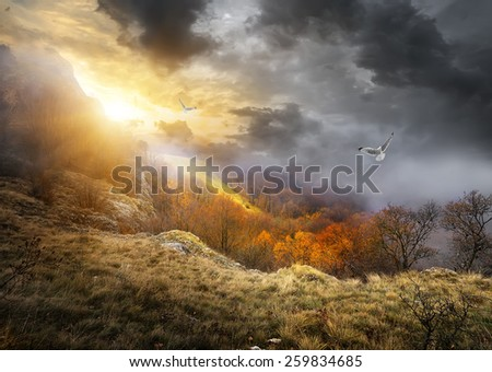 Birds and gray clouds over mountains in autumn - stock photo