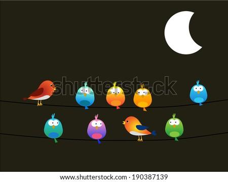 Birds at night - stock photo