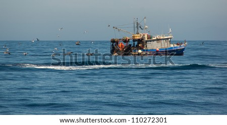 Birds chasing commercial fishing boat off the coast of California - stock photo