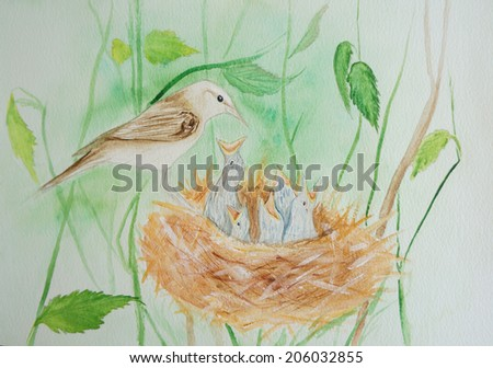 Birds in nest hand painted watercolor illustration - stock photo