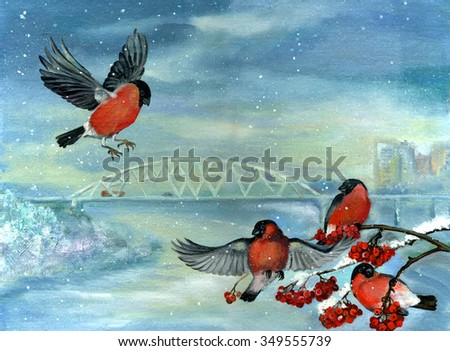 Birds in winter. Titmouse perched on a branch with berries. Bullfinches on trees in winter city. - stock photo