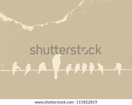 birds on wire on grunge background - stock photo