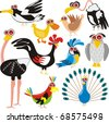Birds Set - (Peacock, Rooster, Crow, Duck, Ostrich, Parrot, Dove, Eagle, Owl, Gull) - Cartoon Character - These different animals are drawn in cute design - Multi-use illustration - stock