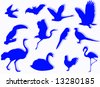 Birds silhouette to represent different species - stock photo