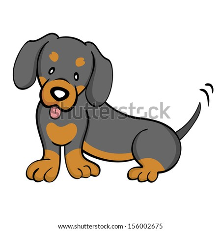 Black and Tan Dachshund isolated - stock photo